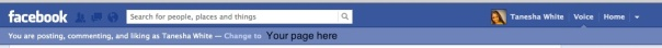 Facebook Voice Feature