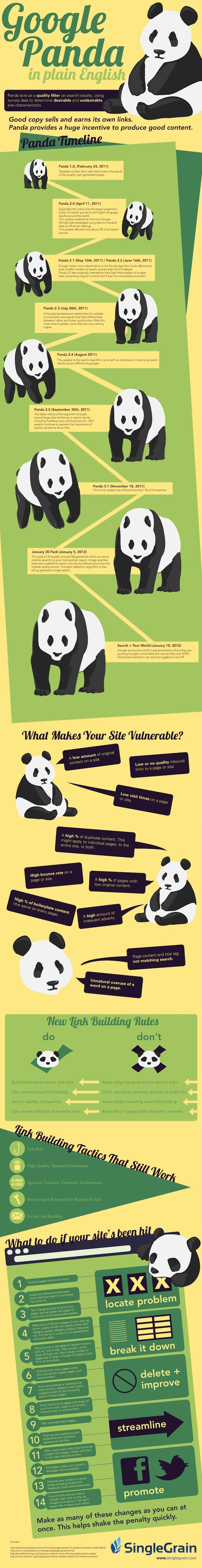 Google Panda Explained Infographic